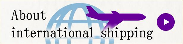 About international shipping